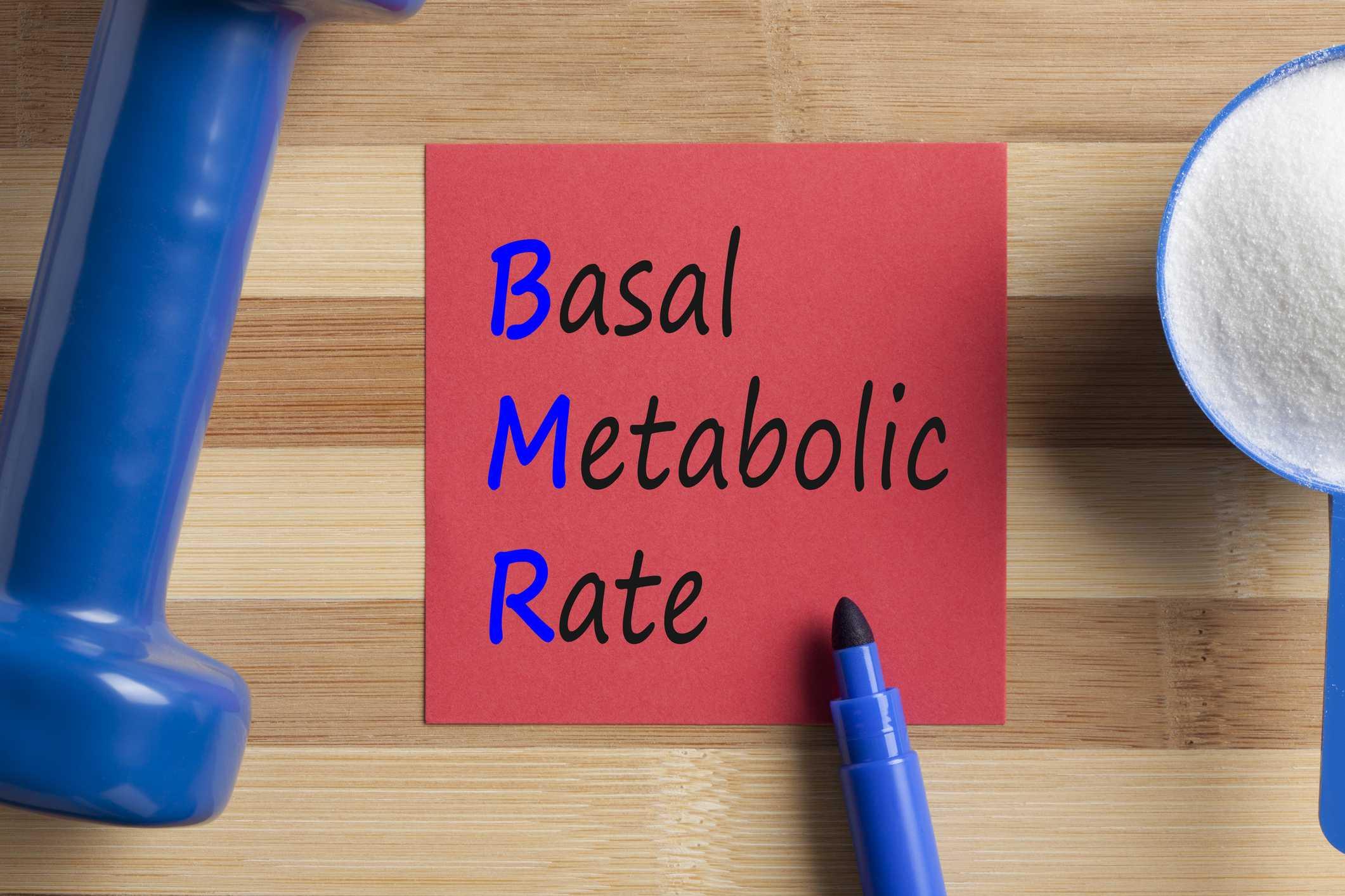 Basal Metabolic Rate Calculator